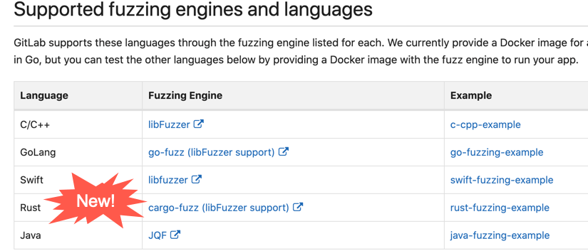New language support for coverage-guided fuzz testing