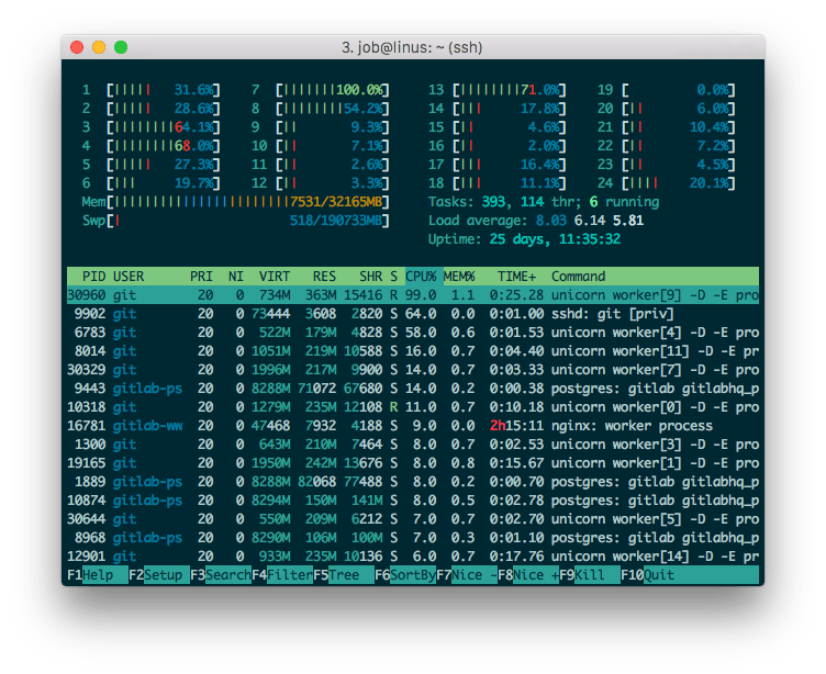 htop on GitLab server